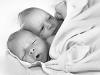 babies2931bw