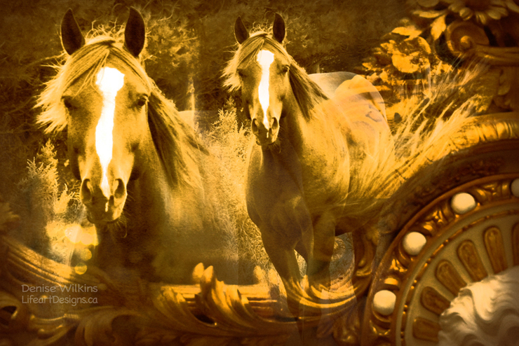photo-composition-horses-3913