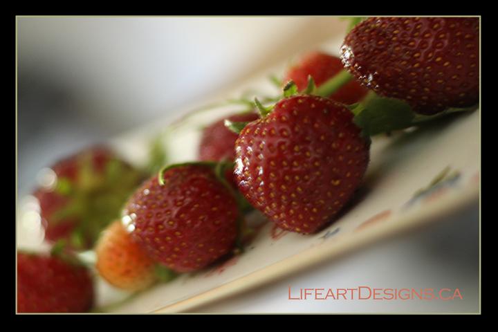 berries2846